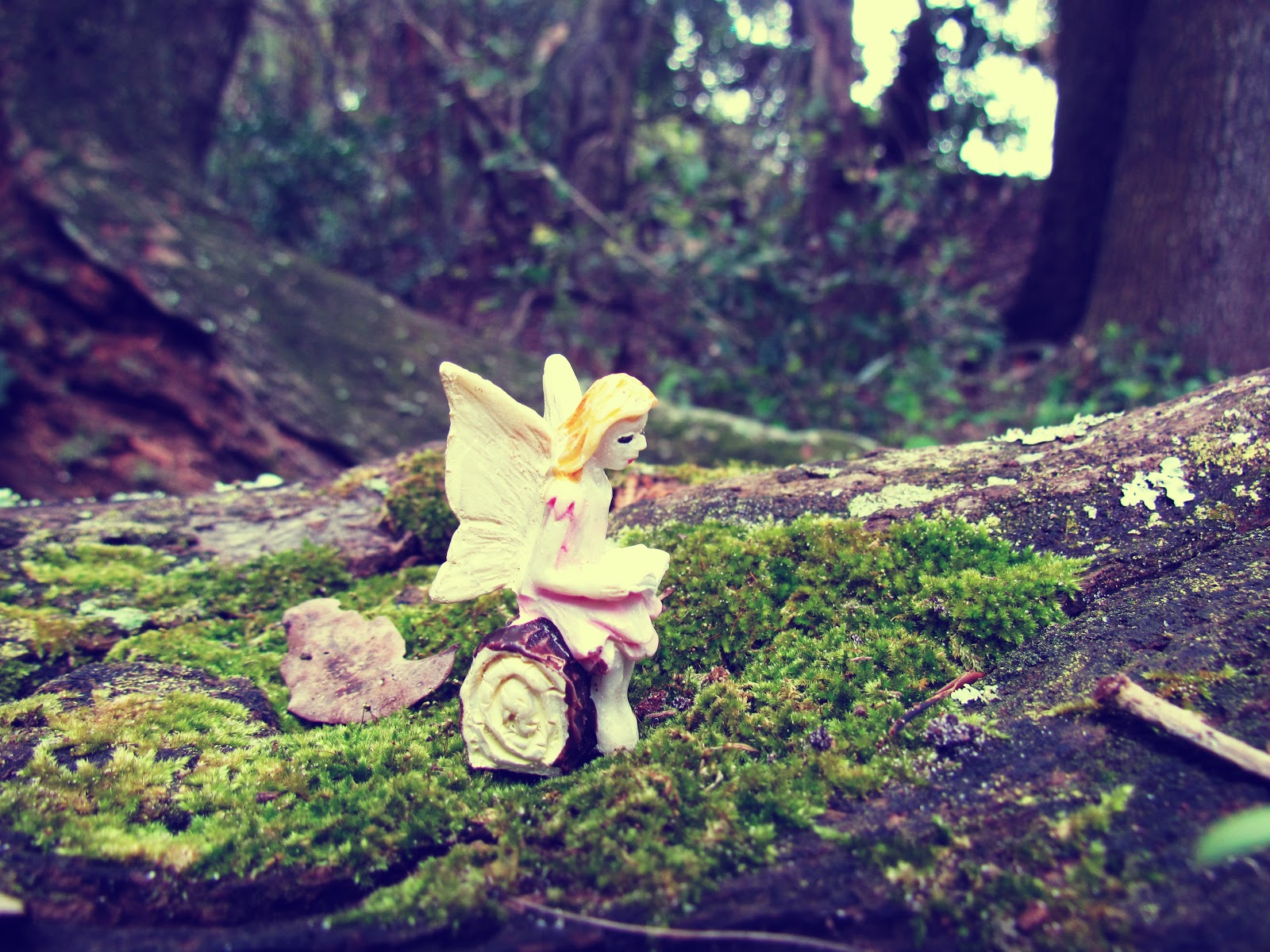 A fairy girl figurine reading a book on a mossy oak tree in the park