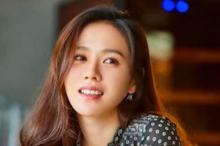 Biodata dan Fakta Son Ye Jin