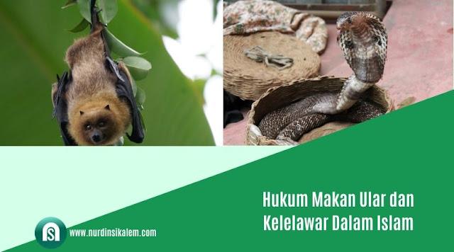 Hukum makan ular
