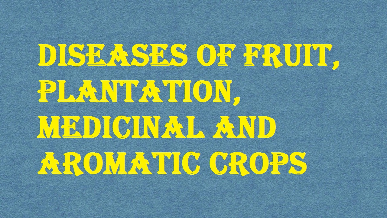 Diseases of Fruit Plantation Medicinal and Aromatic Crops ICAR Ecourse Free PDF Book Download e krishi shiksha