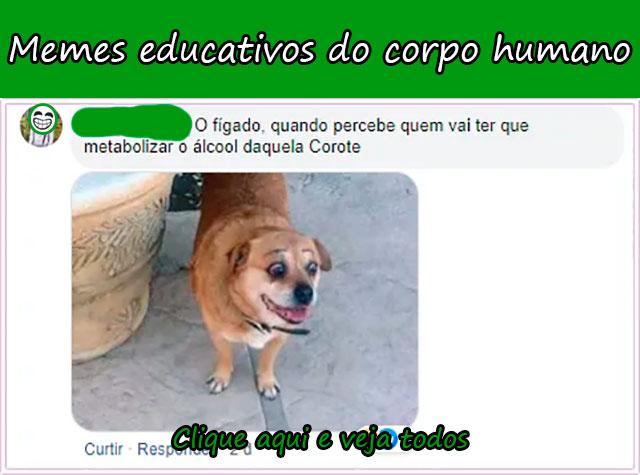 MEMES EDUCATIVOS DO CORPO HUMANO