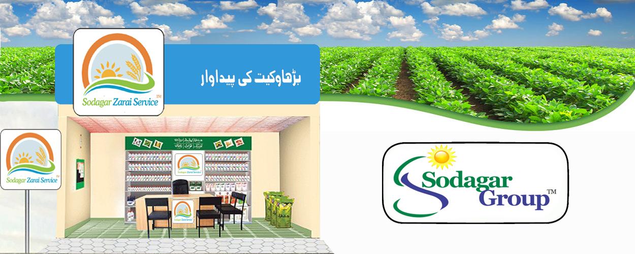Mehar Sodagar Zarai Service