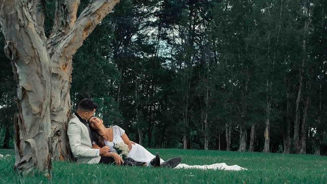 Figure 1. El amor y sus derivadas II - sybcodex.com