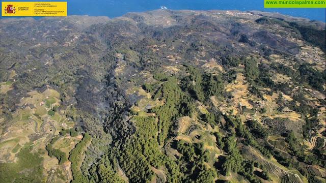 El incendio de La Palma continúa estabilizado y los vecinos evacuados aún no pueden regresar a sus viviendas