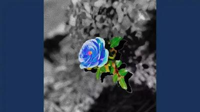 Checkout SoMo New song blue rose lyrics on lyricsaavn