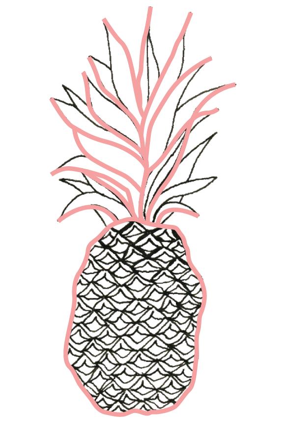 Final Major Project Hannah S Pineapple
