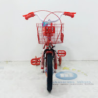 Sepeda Mini Emerson EM9903GX CTB