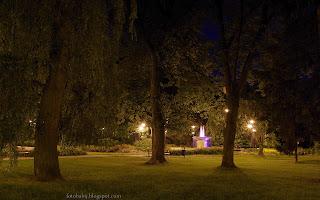 http://fotobabij.blogspot.com/2016/02/skwer-niepodlegosci-noca-trawnik-drzewa.html