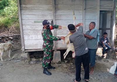 Idhul Adha 1442 H, Babinsa 05/PC Bantu Penyembelihan Hewan Kurban