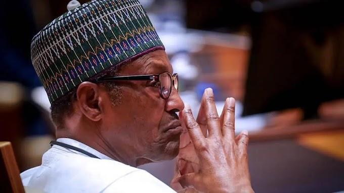 'Hold Buhari government responsible for spread of coronavirus' – Shi'ite