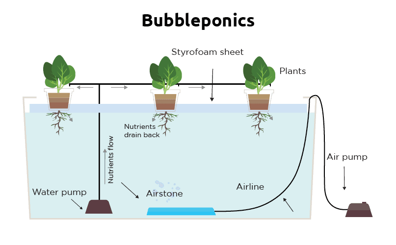 What does DWC mean in hydroponics ?