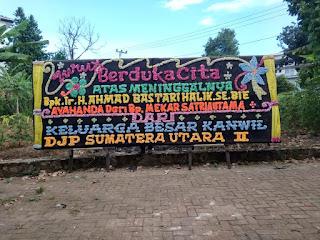 Bunga Papan di Bandar Lampung