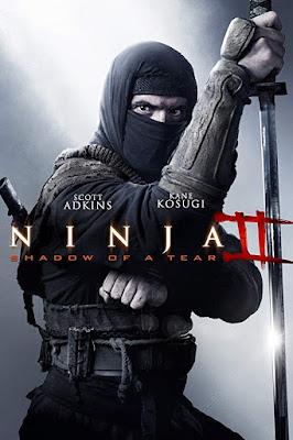 Ninja: Shadow of a Tear 2013 Dual Audio Hindi 720p BRRip 900mb