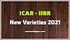 ICAR-IIRR releases four new rice varieties - New varieties released by ICAR 2021