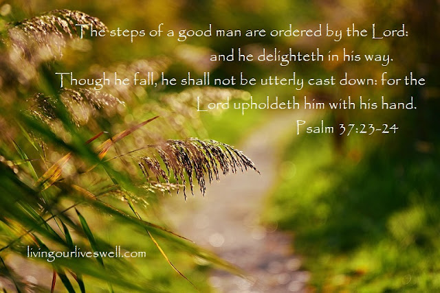 Meditating on God's Promises from  Psalm 37:23-24