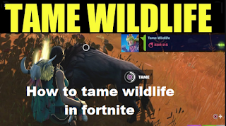 How to hunt wildlife in Fortnite Chapter 2, season 6