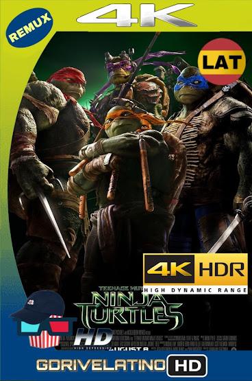 Tortugas Ninja (2014) BDRemux 4K HDR Latino-Castellano-Ingles mkv
