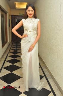 Actress Pragya Jaiswal Stills in Beautiful White Dress at turodu Audio Launch  0036.JPG
