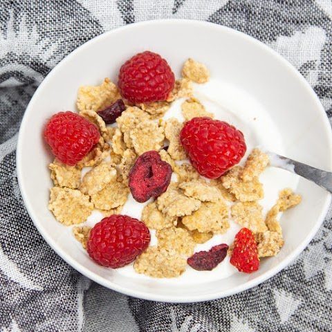 Cereal with Freeze-Dried Berries