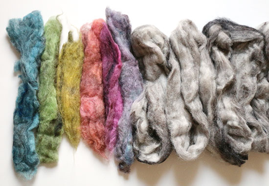 Dyed and undyed mystery wool roving ready to be handspun into yarn on a white background.