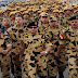 أخطر تصريح إسرائيلي بشأن الجيش المصري