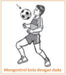 Mengontrol bola dengan dada