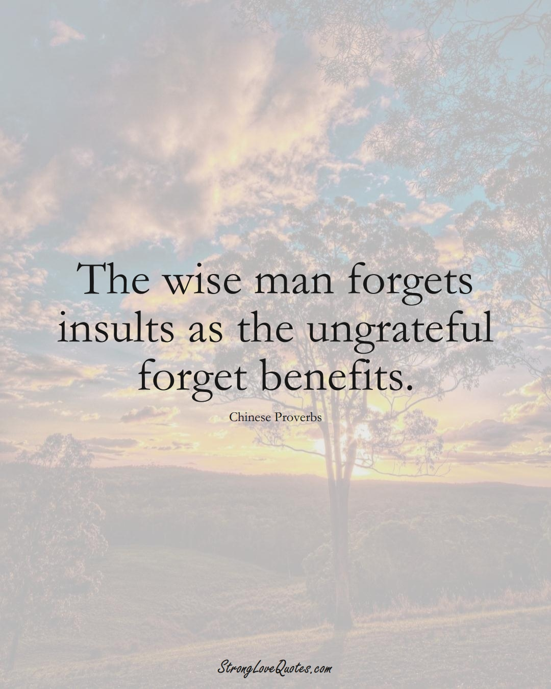 The wise man forgets insults as the ungrateful forget benefits. (Chinese Sayings);  #AsianSayings