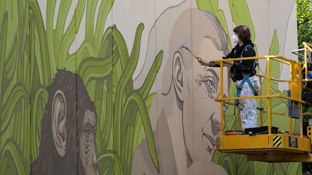 Mural Jane Goodall - Proyecto UPV Dones Ciencia - artista Lidia Cao