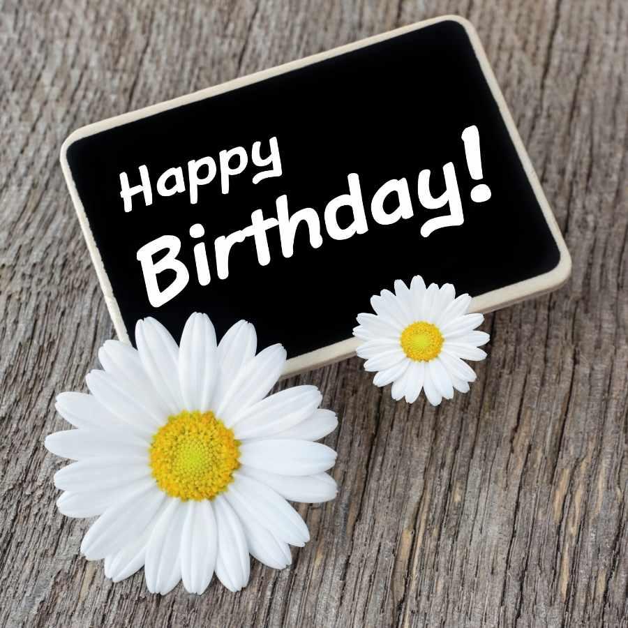 happy birthday dear sir images
