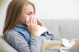 Penyebab Penyakit Influenza