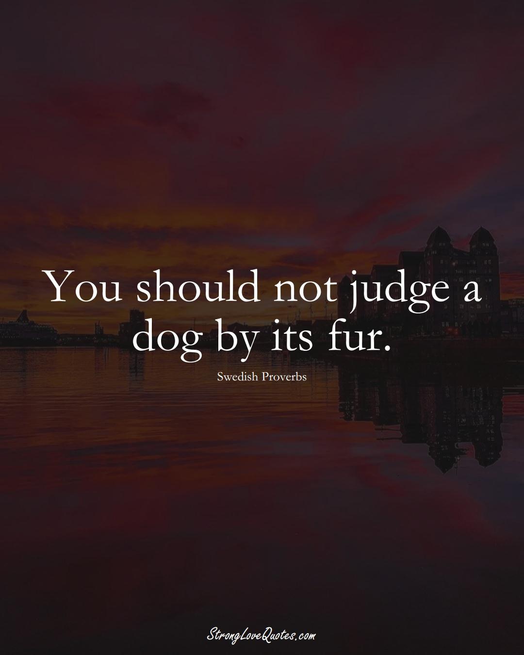 You should not judge a dog by its fur. (Swedish Sayings);  #EuropeanSayings