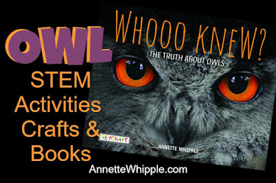 Owl STEM activities, owl crafts, owl books and Whooo Knew book