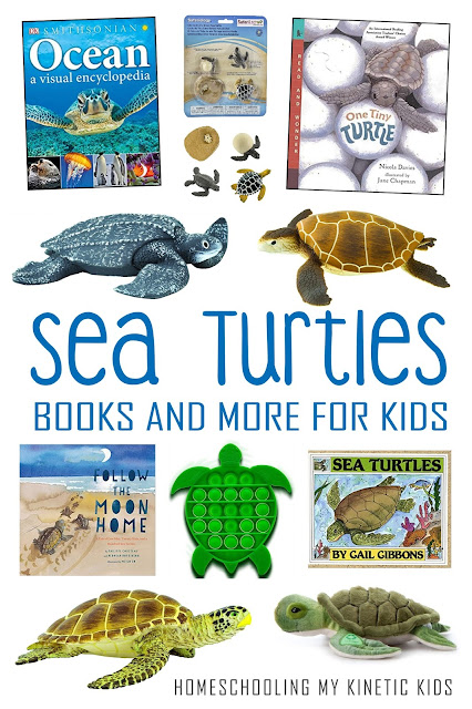 Learn more about sea turtles with these great books and toys.  Great for summer, earth day, or a study of the ocean