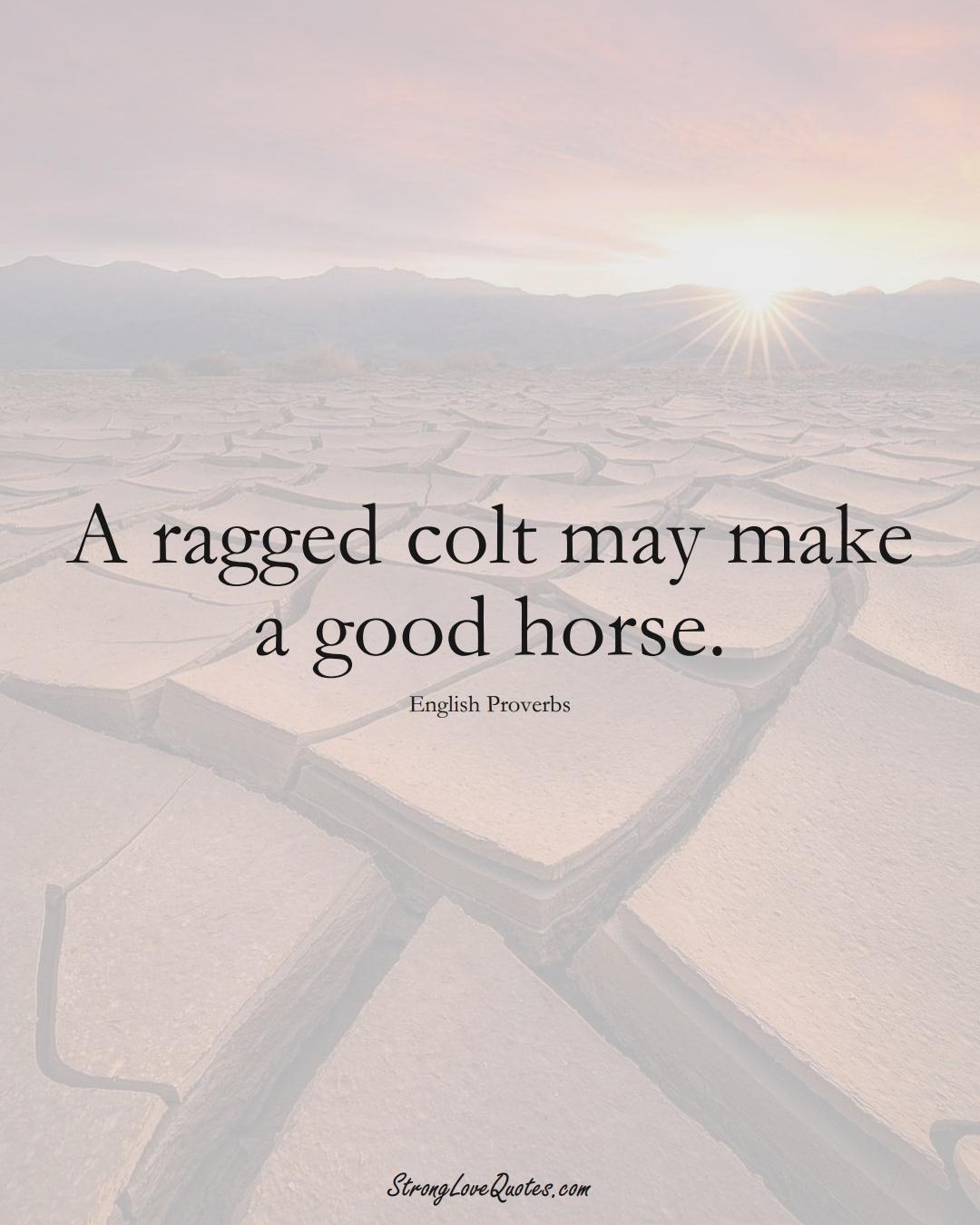 A ragged colt may make a good horse. (English Sayings);  #EuropeanSayings