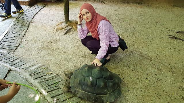 farm attractions, farm in the city, malaysia farm, tourism, tourist attraction seri kembangan, tourist attractions selangor, travel,