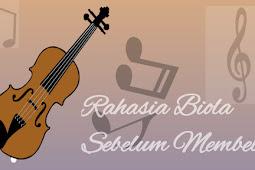 Tips Sebelum Membeli Alat Music Biola atau Violin