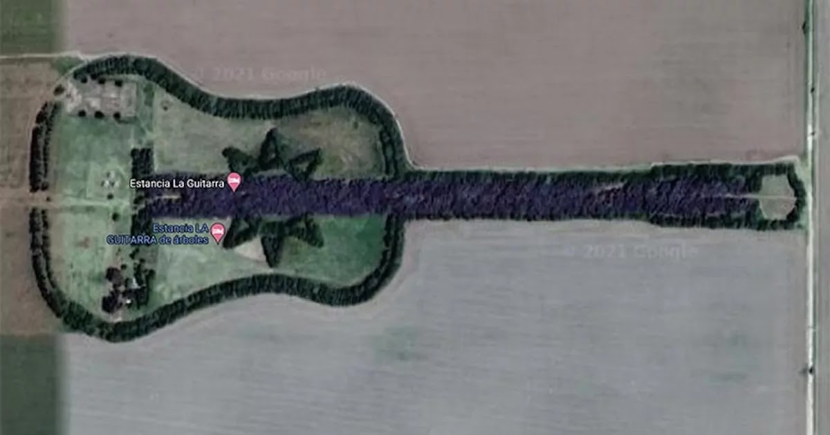 Argentinian Farmer Spends Decades Growing Guitar-Shaped Forest In Memory Of His Wife