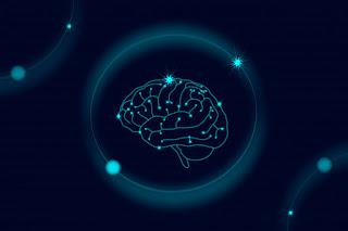 cérebro png