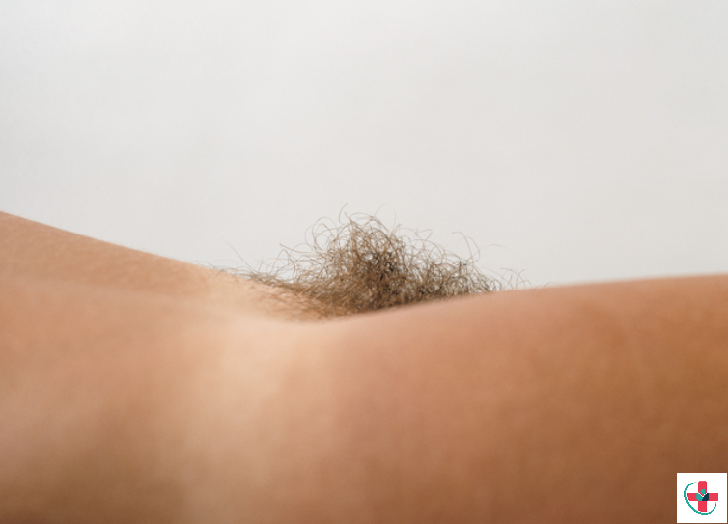A well-kempt pubic hair