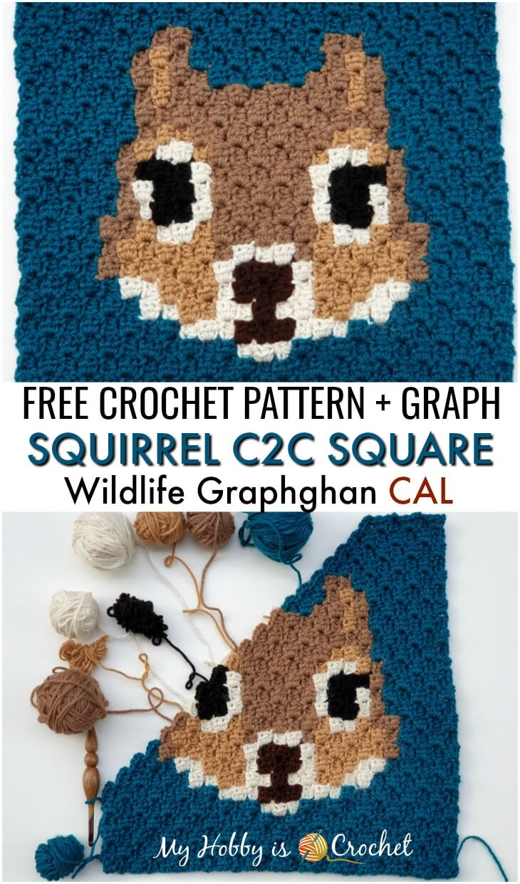 Squirrel C2C Square - Free Crochet Pattern + Graph