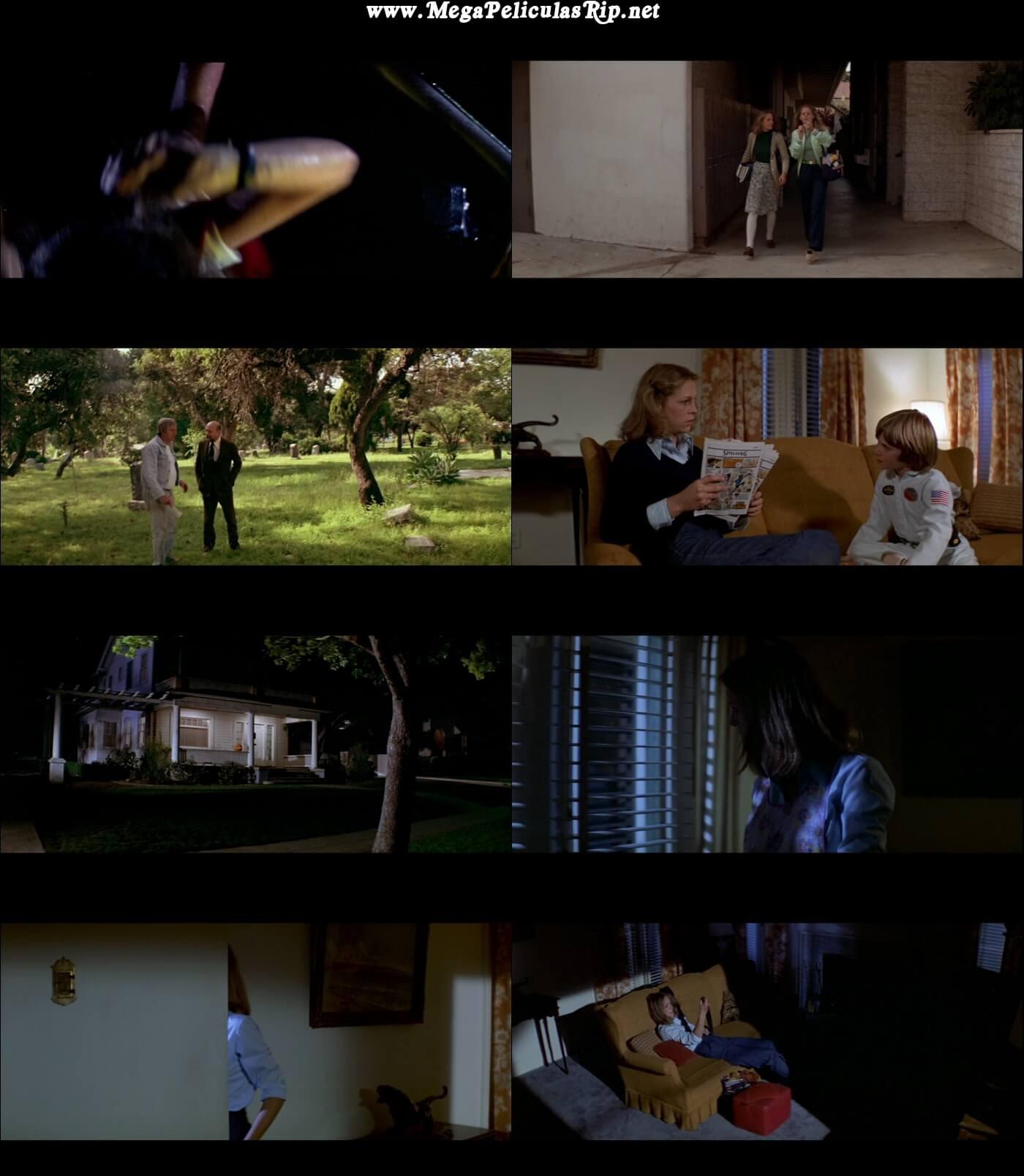 Halloween 1080p Latino