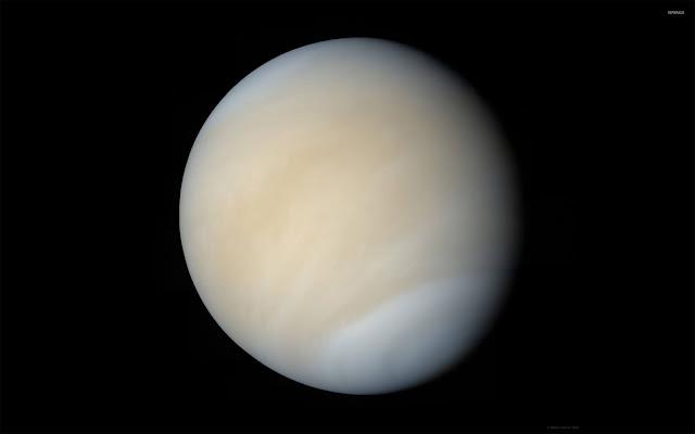 Venus-pic-image-for-profile-DP