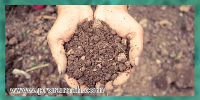 manfaat biopori - Bisa Menyehatkan Kondisi Tanah