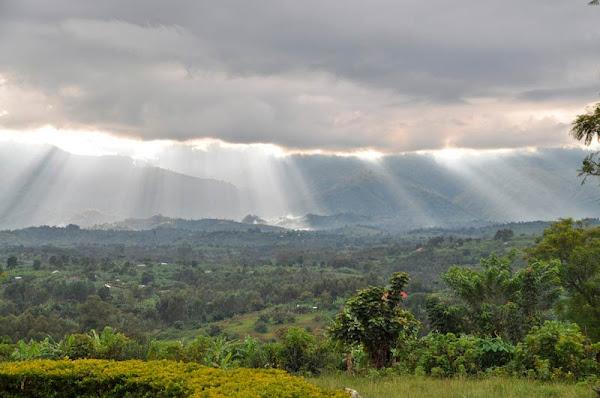 República Democrático del Congo