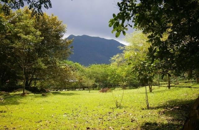http://panama.viajenda.com/articulos