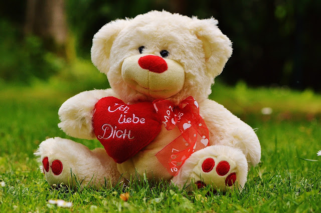 beautiful  Teddy bear day picture