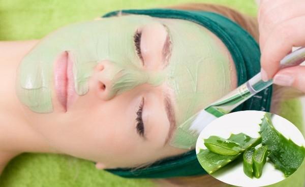 Aloe vera Benefits, Aloe vera uses Disadvantages of Aloe vera