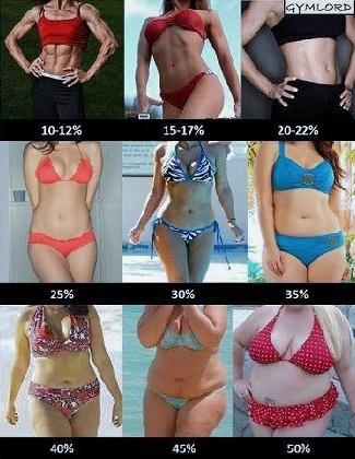 Tỷ lệ phần trăm mỡ cơ thể nữ bodyfat
