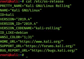 Kali Update 2019.4