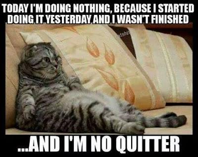 Tomorrow i am doing...